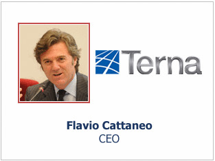 Flavio Cattaneo Terna 1H 2010 Consolidated Results